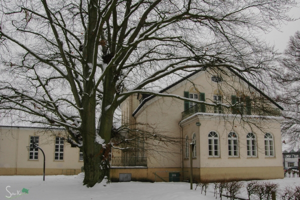 Seitenansicht mit ehemaligem Wintergarten 2010